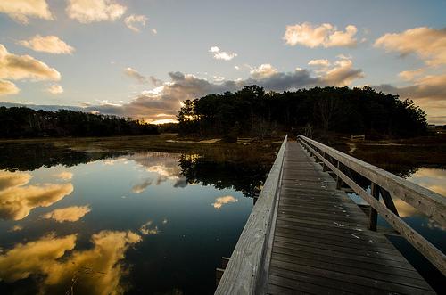 November 2013 Wellfleet MA Uncle Tim's Bridge / elmerfishpaw