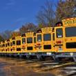 School buses in the fall / tncountryfan