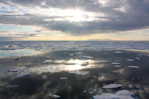 Sea Ice in the Chukchi Sea / gsfc