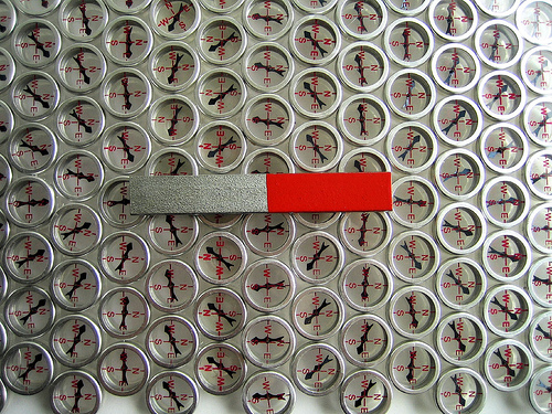 bar magnet on a compass array / daynoir